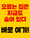 대한민국 아파트