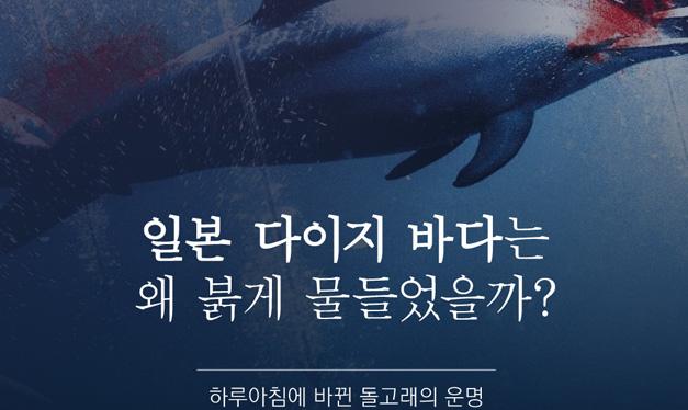 일본 다이지 바다는 왜 붉게 물들었을까