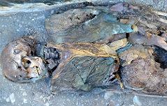 몽골 고분서 2천년 前 <br>중국옷 입은 미라발견