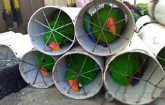 파이프에 갇힌 앵무새 <br>인니 당국에 구조