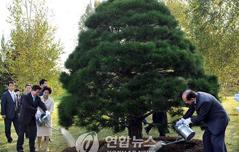남북정상 최초로<br> MDL에 기념식수