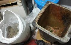 유명 `맛집`에 속았다<br> 쓰레기통 주꾸미 해동?