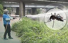 춘천서 열대 희귀<br> 감염병 의심환자 발생