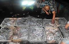 中오징어 싹쓸이 <br>  어획에 세계 `골머리`