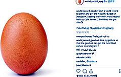 평범한 달걀 사진 좋아요 3천700만개 달성