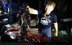 숨진 고래 뱃속에 플라스틱 쓰레기 40kg