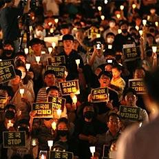 촛불 든 서울대생들
