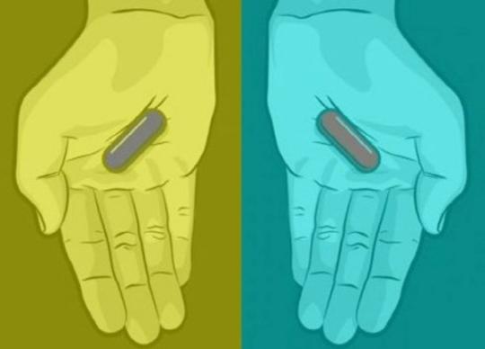 이번엔 '알약 색깔' 논란…반복되는 이유는?