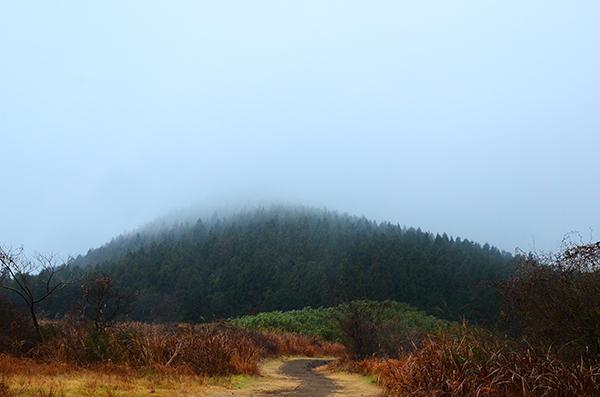 제주 거문오름 트레킹 - 바람의 길목, 곶자왈을 만나다