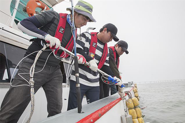 Researchers from SK Telecom and Hoseo University are installing a data receiver into the sea before demonstrating underwater communication using sound waves. [Photo by SK Telecom]