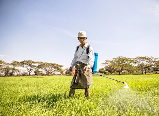 Japan is planning to build a waste-to-diesel plant to fuel tractors for Bago's farmers.