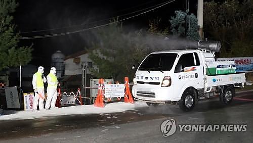 '최고 수준 방역도 뚫렸다'…김포 ASF 확진에 '당혹'