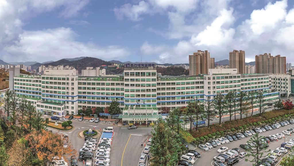 조선대병원 항생제·주사제 처방 적정성 평가 '1등급' 대표이미지