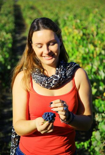 세투발 지역 와인 조합 뻬고앵쉬는 대중적으로 친숙한 맛의 와인을 많이 만든다
