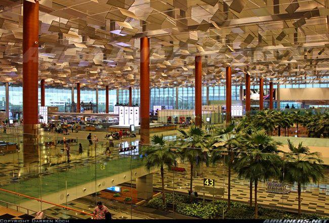싱가포르 창이 국제 공항의 모습. 야자수 울창한 것 빼면 약간 인천공항이랑 느낌이 비슷하다.