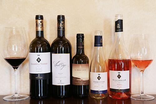 구아도 알 타소의 와인들
