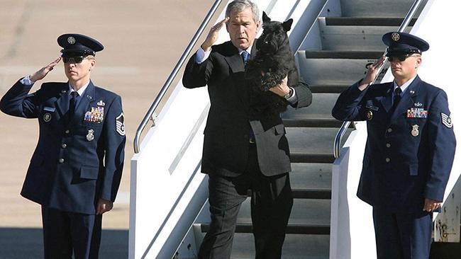 조지 W 부시 전 미국 대통령(가운데)와 애완견 바니. /사진=AP
