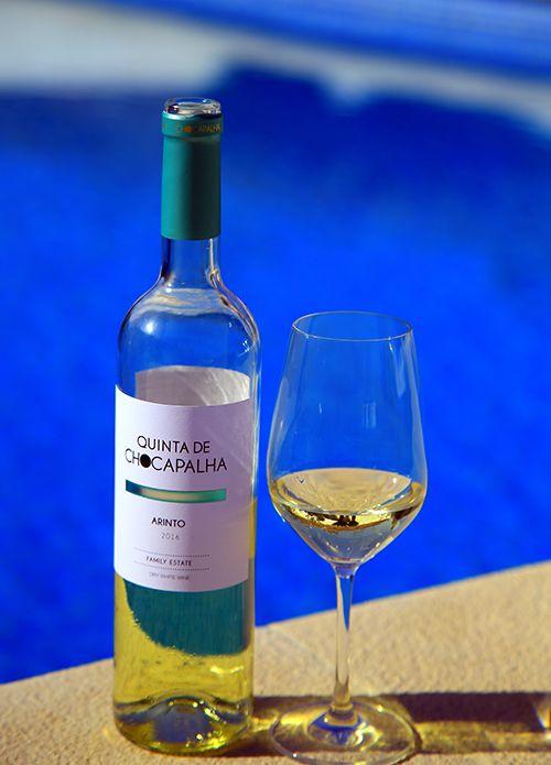 포르투갈의 대표적인 화이트 와인 품종 아린투