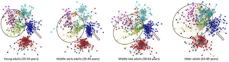 나이가 들수록 서로 다른 단위(각기 다른 색깔로 표시)들 간의 연결이 증가하고, 단위들 간의 구분이 약해진다. /사진=Wig GS (2017) Segregated Systems of Human Brain Networks. Trends Cogn Sci. 2017 21:981-996.