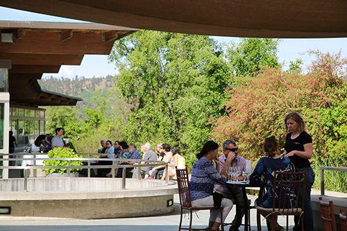 마테틱 와이너리에서 와인을 즐기는 사람들