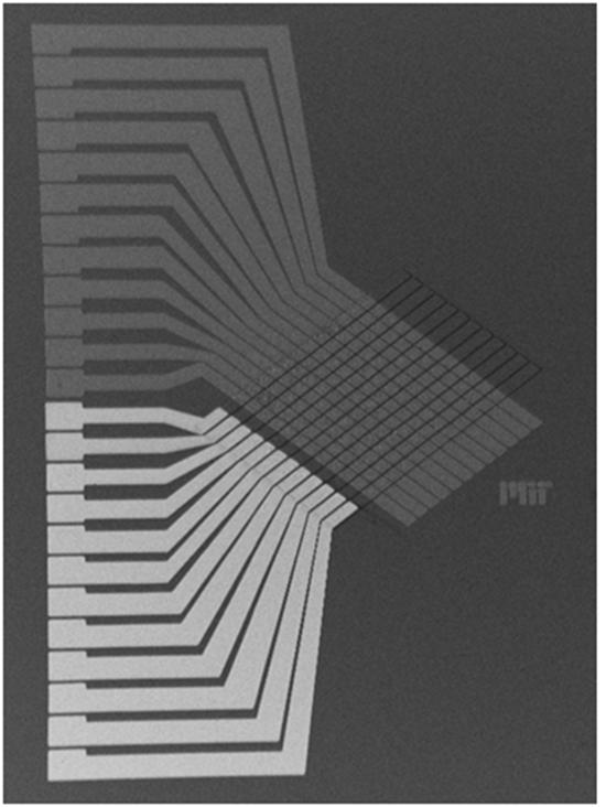 연구진이 개발한 인공지능 소자를 전자현미경으로 본 모습. 이 소자에 구동회로를 붙이면 실제 컴퓨팅을 수행하는 칩이 된다. 크기는 가로 세로 12mm. /사진제공=MIT