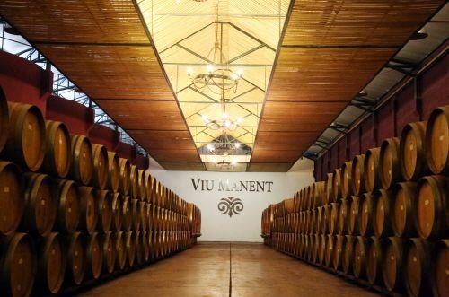 뷰 마넨 와이너리의 와인 저장고.