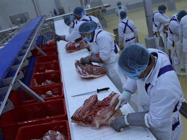 Inside a meat processing plant operated by the consumer staple firm Masan Group Corporation in Ha Nam Province`s Dong Van IV Industrial Zone. The company has attracted attention from foreign investors lately. - VNA/VNS Photo Vu Sinh