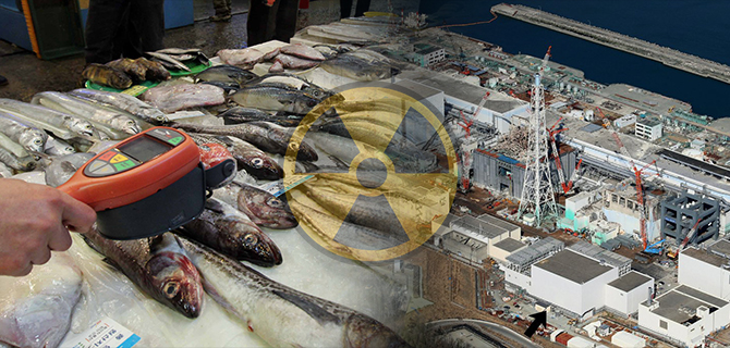 Seafood from Japan is under inspection for possible radioactive contamination. [photo by Lee Seung-hwan]
