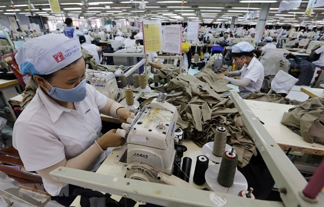 To succeed in a demanding market like the EU, Vietnamese firms should improve the quality of their goods, invest in technology and become more professional, economist Nguyen Tri Hieu said. - VNA/VNS Photo