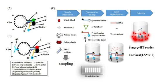 An image showing development of fluorescent nanoparticle kit and application of nanoparticles. [Provided by Ministry of Science and ICT]