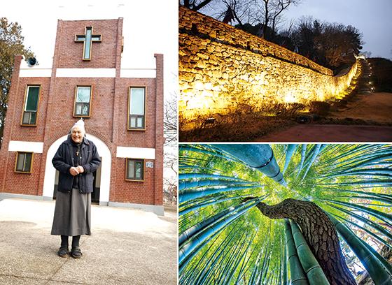 1968년부터 한센 환자들을 보살펴온 강칼라(79) 수녀, '미스터 션샤인'에 등장했던 고창읍성, 소나무가 대나무를 타고 오르는 연리지는 맹종죽림의 이색 명소다.