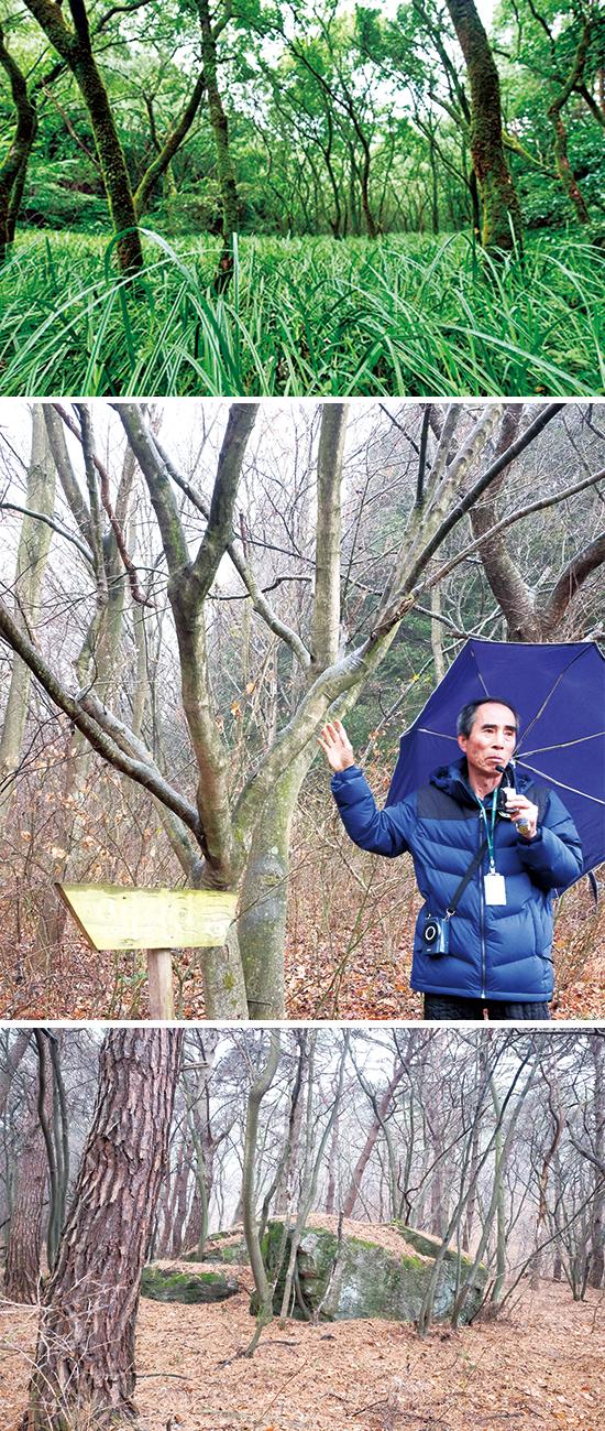 정읍 월영습지와 솔티숲길은 2018년에 생태관광지로 지정됐다. 사진은 월영습지, 주민이자 로컬 생태해설사인 김광열 에코매니저, 원래는 주민 쉼터였지만 6.25 때 인민재판을 하던 자리로 바뀌었다.